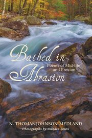 Bathed in Abrasion, Johnson-Medland N. Thomas
