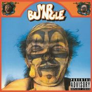 Mr. Bungle, Mr. Bungle